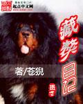 藏獒日记封面