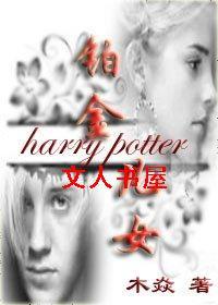 [HP]铂金儿女封面