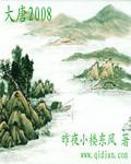 大唐2008封面