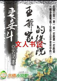 妻妾斗:王爷家的后院儿封面