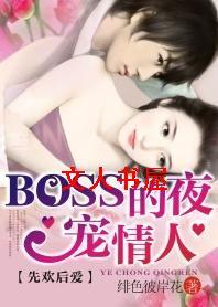 先欢后爱:BOSS的夜宠情人封面