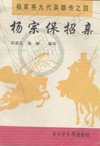 杨家将九代英雄传